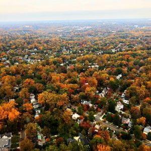 View from a helicopter flying over Baltimore during autumn with colorful trees.